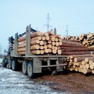 Эко древесина из Смоленской области
